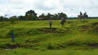 Paseos en caballo en hacienda Pampa Limeña