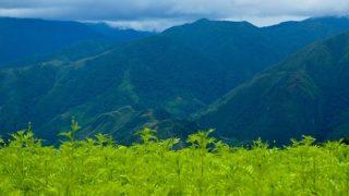 Montañas de Palmapata